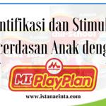 Identifikasi dan Stimulasi Kecerdasan Anak dengan Morinaga MI PlayPlan