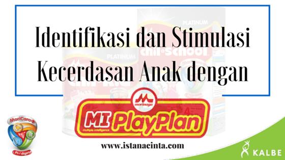 Identifikasi dan Stimulasi Kecerdasan Anak dengan MI PlayPlan