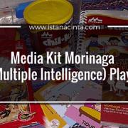 Media Kit Morinaga MI (Multiple Intelligence) PlayPlan