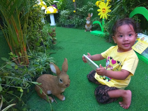 Bereksplorasi bersama Kelinci