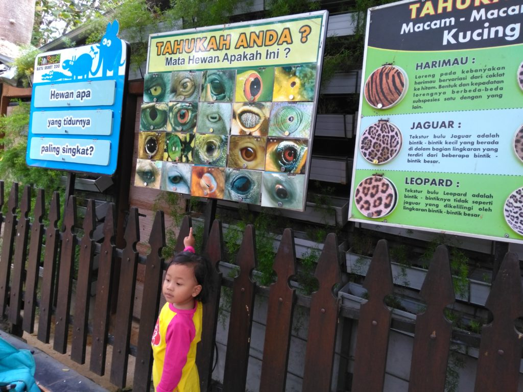 Gaya Belajar Anak Day 17: Belajar di Zoo