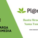 Keluarga Multimedia Day 12: Menemukan Nama Tumbuhan dengan Aplikasi Pl@ntNet