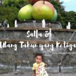 Salfa dan Ulang Tahun yang Ketiga